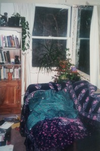 books tapestries plants lights pottery