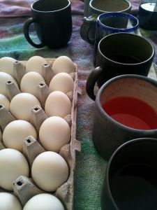 Easter eggs to dye