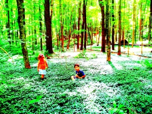2013-07-03 periwinkle forest Flowergirl Sunboy art photo
